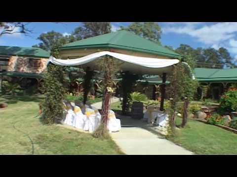 bearded-dragon-tamborine-weddings