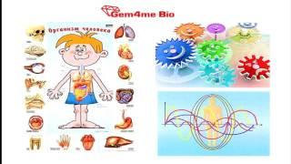 My # Gem4me 09 11 16г  Новости от руководителя Wellness направления компании Gem4me Михаила