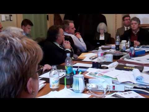 VT DPS Commissioner June Tierney Senate Finance 1 18 2017