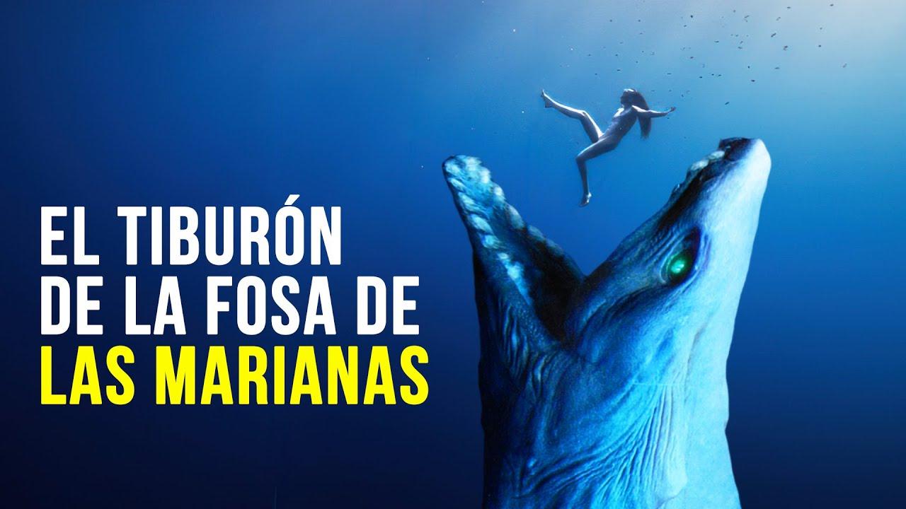 El Tiburón más Aterrador que Megalodon de la fosa de las Marianas