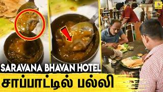 Lizard in Food | Saravana Bhavan | Delhi