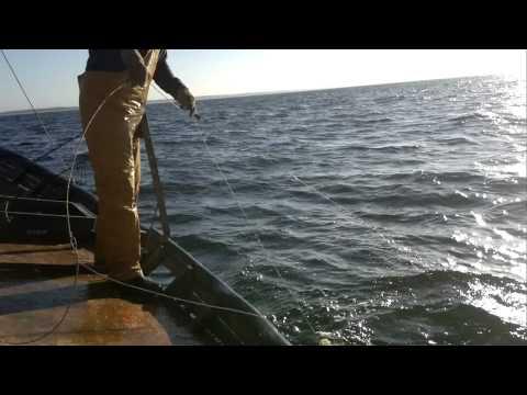 Pesca Artesanal al Palangre.Piriapolis Maldonado Uruguay