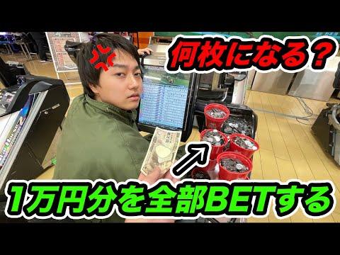 【検証】いきなり競馬のメダルゲームに 「1万円分のメダル全部賭けて」と言って全部突っ込んだら何枚になる?【ゲームセンター】