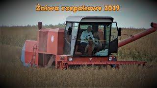 HIT Żniwa Rzepakowe Na Lubelszczyźnie BizonZ056 ZetorForterra115+MetaltechDB10