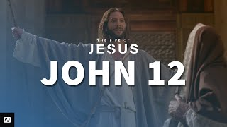 John 12 - A Different kind of King
