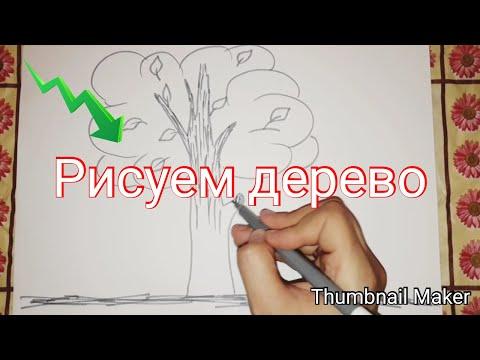 Вопрос: Как нарисовать простое дерево?