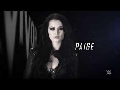 WWE Survivor Series, November 23, 2014