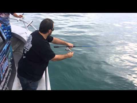 Reel Time Fishing Charters ,Martha Cove ,Safety Beach ,Mornington Peninsula.Squid Charters Melb