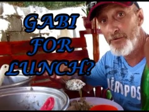 Gabi for lunch? Becoming Filipino! Philippine Province Living  June Trip VLOG 18