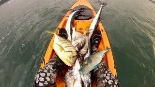 Spearfishing from kayak - Chasse sous-marine en kayak
