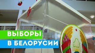 Прошли выборы в Палату представителей Беларуси / Видео