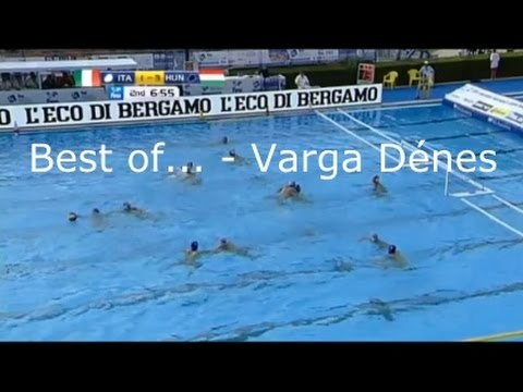 Best of... - Varga Dénes