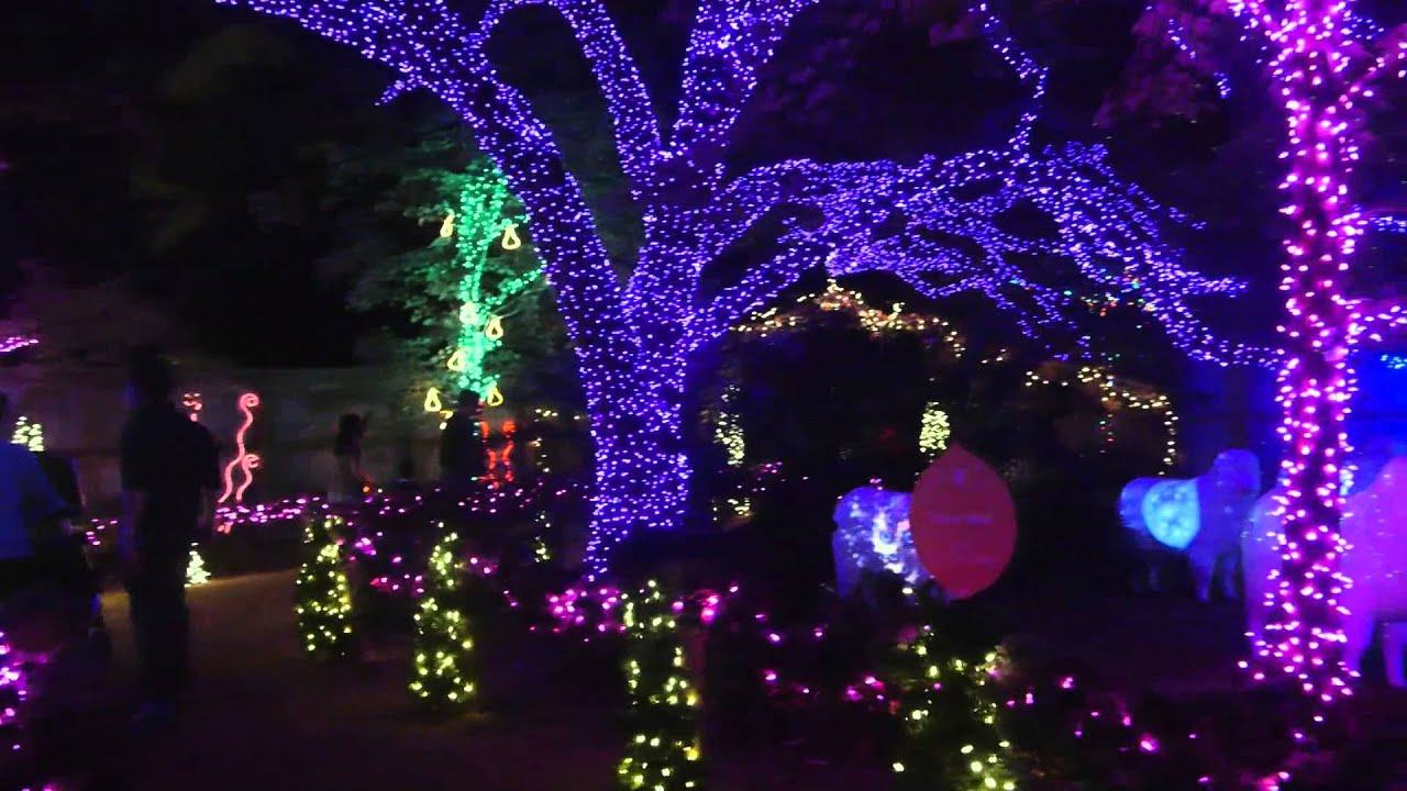 Awesome TXU Energy Presents Zoo Lights
