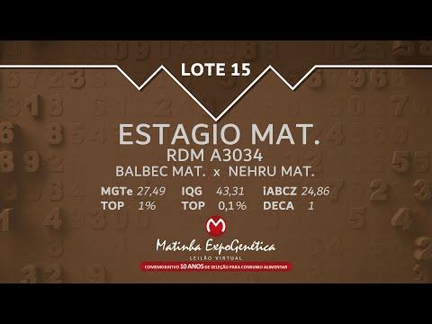 LOTE 15 MATINHA EXPOGENÉTICA 2021