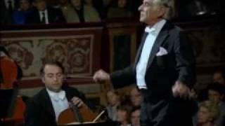 Bernstein - Tragic Overture (Brahms) [1/2]