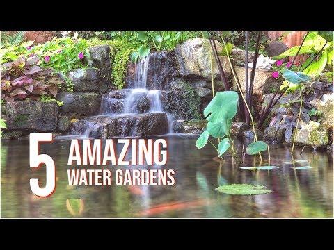 WATER GARDEN TOUR - 5 Incredible Koi Ponds | Fountainscapes