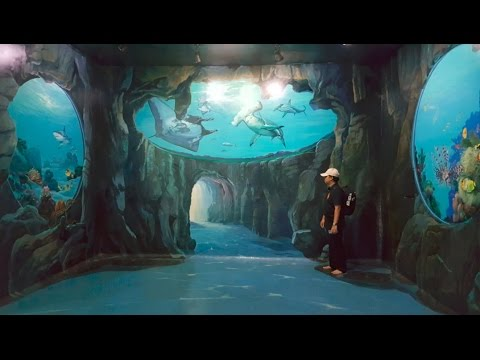 Dmz 3d Museum Di Kuta Bali Korea 3d Trick Art Part 2 Youtube