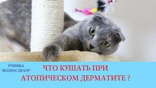 06.04.18 Кормление при атопическом дерматите