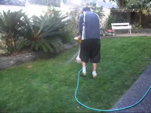 Lawn Care Weed N Feedwmv YouTube