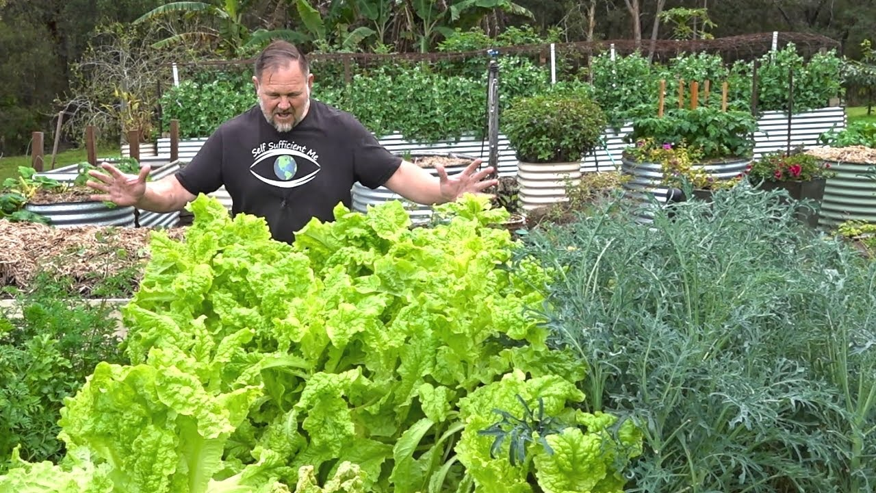 Do These 5 THINGS to Grow MORE Veggies ALL Season