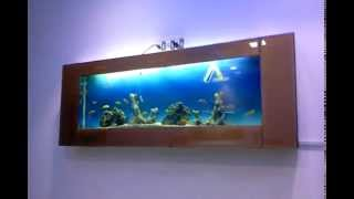 Plasma Aquarium Sea Effect Design Jabbar Aquarium Design India.spencer,chennai