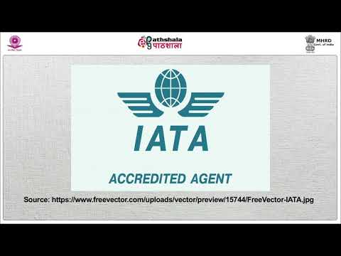 IATA and ICAO: