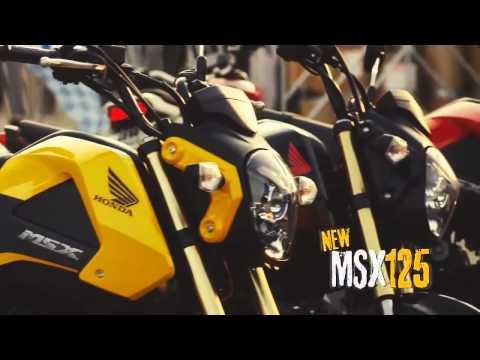 เฉดสีและราคา Honda MSX125 สตรีทไบค์ รุ่นปี 2015
