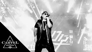 "Daddy Yankee 24/7  ""The Kingdom"" 2015"