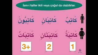 Kur'ân'ı Anlayarak Okuma Rehberi.