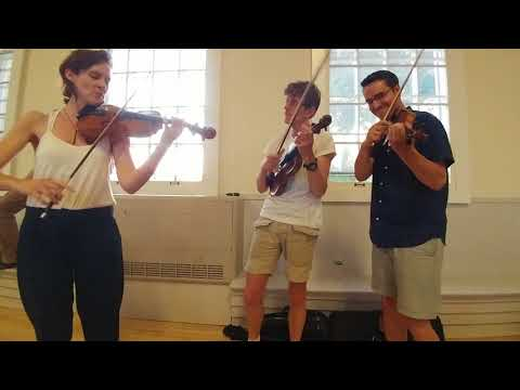 Fiona Monbet, Tim Kliphuis, and Jason Anick - Pent Up House