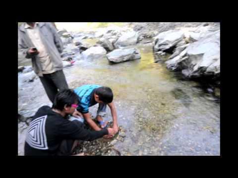 Nepal Natural Gas (Dailekha)