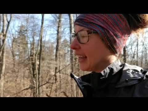 Day 56- April 6th- Wise shelter to Trimpi shelter- 20.1 miles