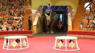 В Астрахань приехал Варшавский цирк со слонами