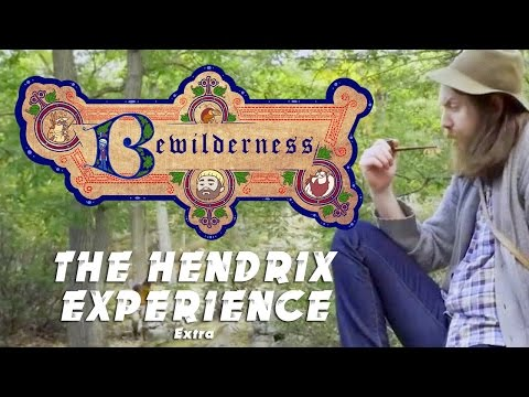 "Bewilderness - Extra ""The Hendrix Experience"""