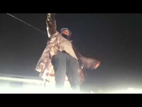SchoolBoy Q - Collard Greens Ft. Kendrick Lamar LIVE @STAPL