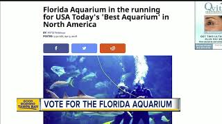 Florida Aquarium In The Running For USA Today S Best Aquarium In North America