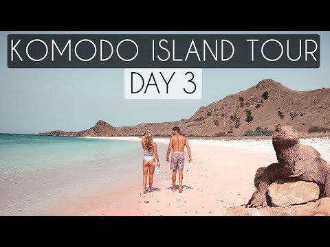 KOMODO DRAGONS & PINK BEACHES - KOMODO ISLAND BOAT TOUR