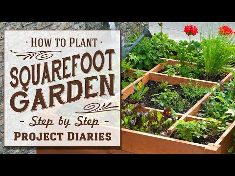 ★ How to: Plant Square Foot Gardening (A Complete Step by Step Guide)