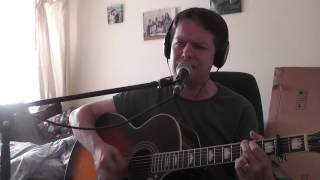 Boys of summer - Don Henley (Loop Cover)