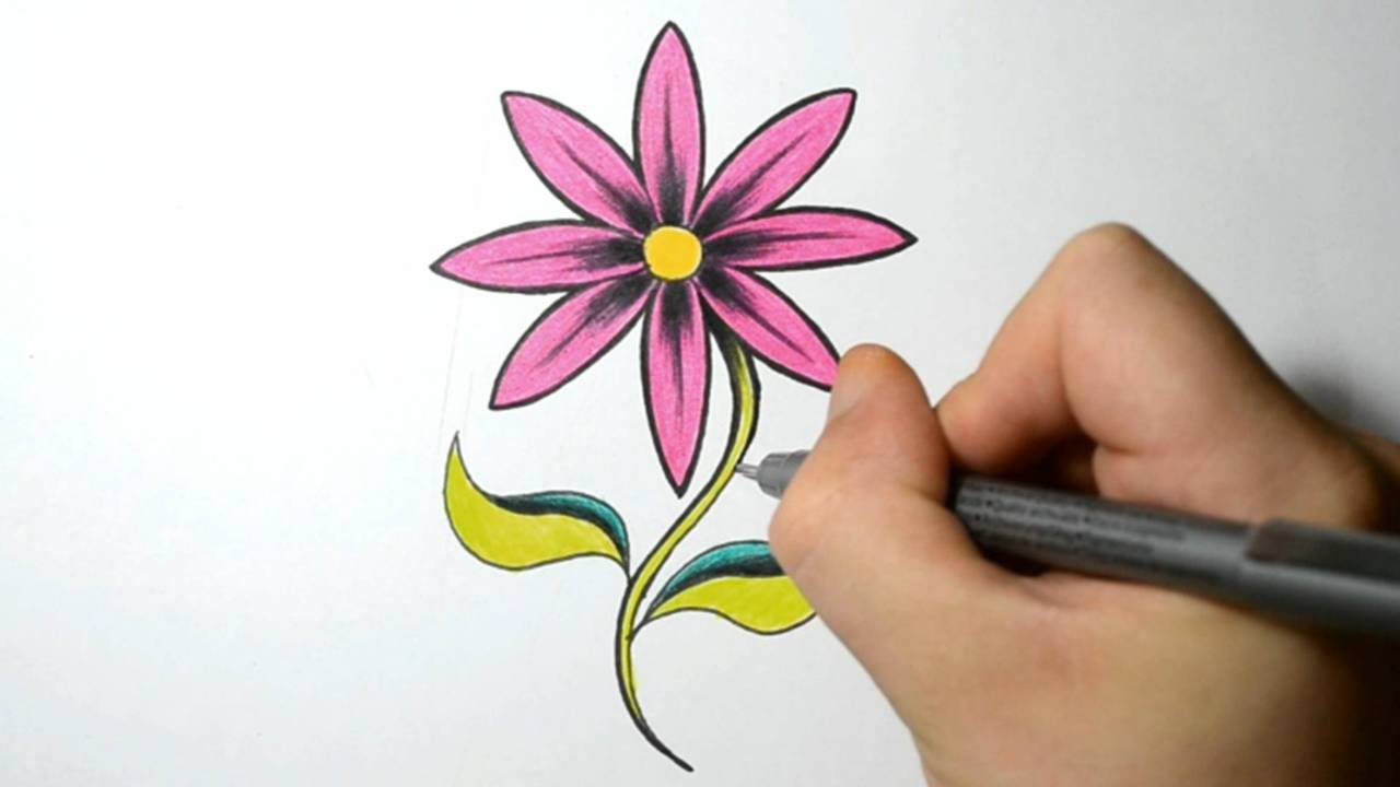 How to Draw a Simple Flower Hot Pink Daisy YouTube