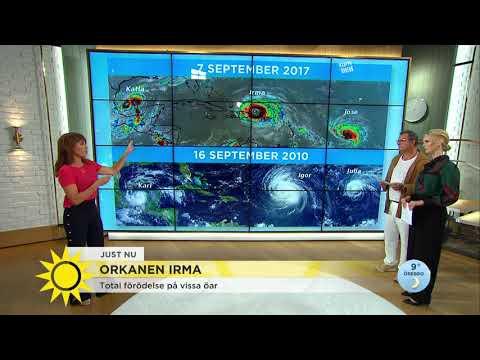 """Svenska Nathalie inväntar orkanen Irma: """"Alla försöker bara hålla ut"""" - Nyhetsmorgon (TV4)"""