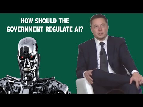 Elon Musk on Artificial Intelligence and Government Regulation