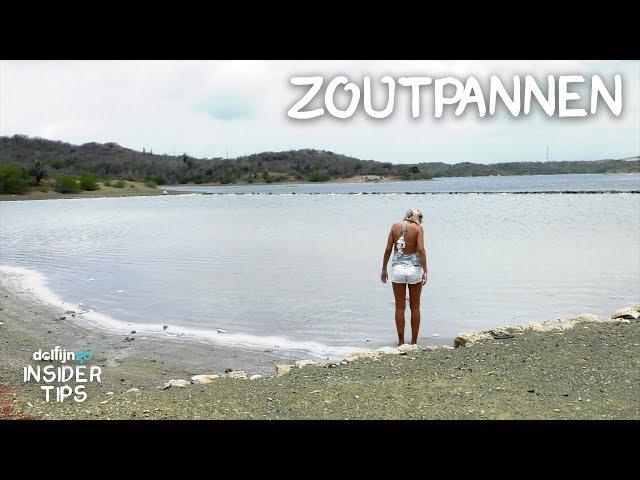 DE ZOUTPANNEN VAN CURAÇAO