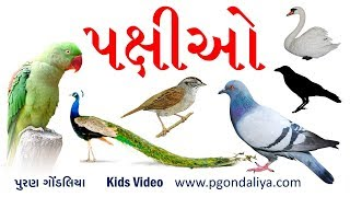 પક્ષીઓના નામ | Birds Name in Gujarati | K.G.| Kids Video by Puran Gondaliya