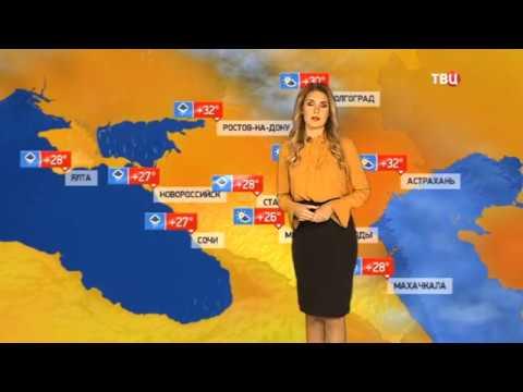 Погода сегодня, завтра, видео прогноз погоды на 8.6.2019 в России
