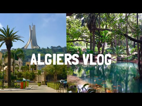ALGIERS VLOG 🇩🇿 (Beached Whale, Epic Wedding and New Metro)