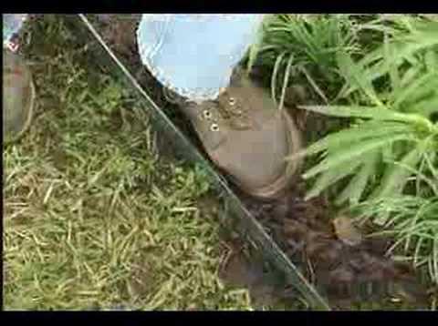 Easy Gardener Fiber Edge - YouTube