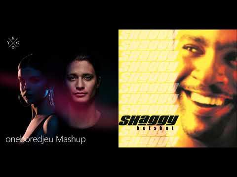 Shag Me - Kygo feat. Selena Gomez vs. Shaggy feat. Rikrok (Mashup)