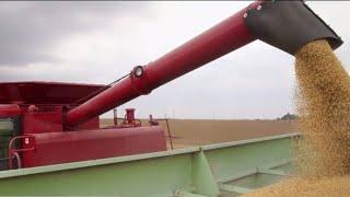 China's new tariffs will cost U.S. farmers millions of dollars