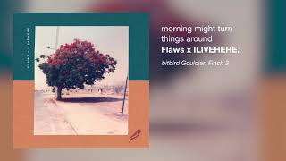 Flaws x ILIVEHERE. - morning might turn things around